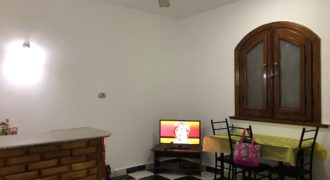 FULLY FURNISHED 1-BEDROOM APARTMENT IN EL KAWTHER AREA