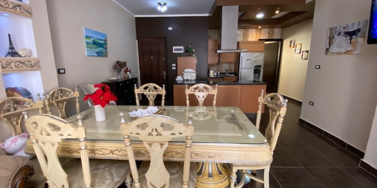 LARGE FURNISHED APARTMENT