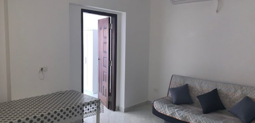 Brand new apartment with 1-bedroom in Intercontinental area