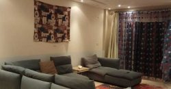 Fully furnished apartment with 2 bedrooms in Palma Resort