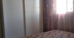 Cozy bright apartment